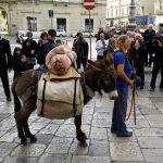 Dessinatrice-voyageuse et son âne